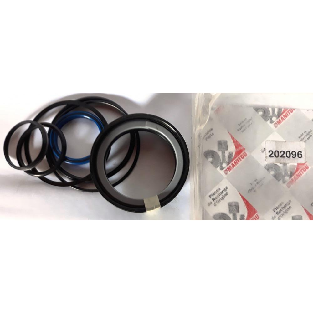 Ремкомплект цилиндра маниту (MANITOU) 202096